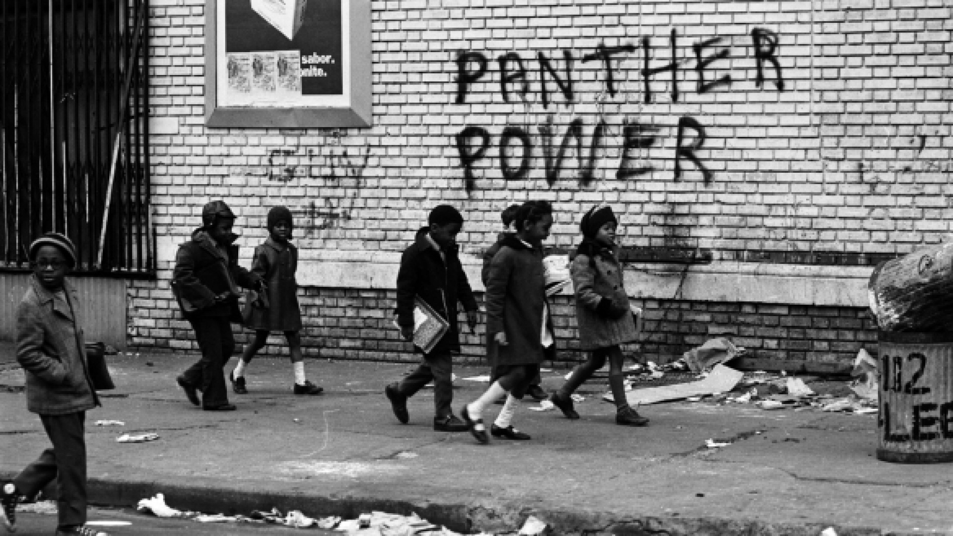 The Black Panthers : Vanguard of a Revolution