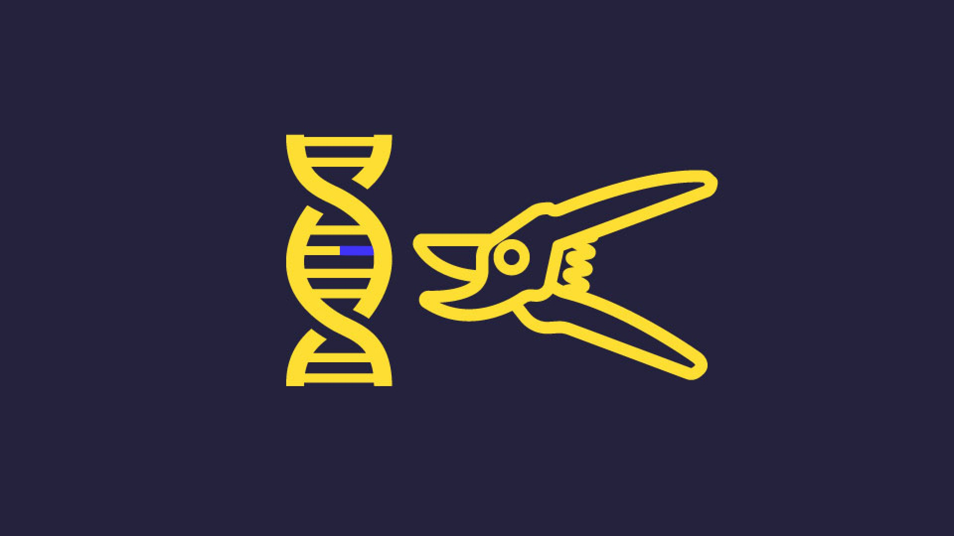 Les workshops Design Fiction Club 2/2 CrispR/Cas9