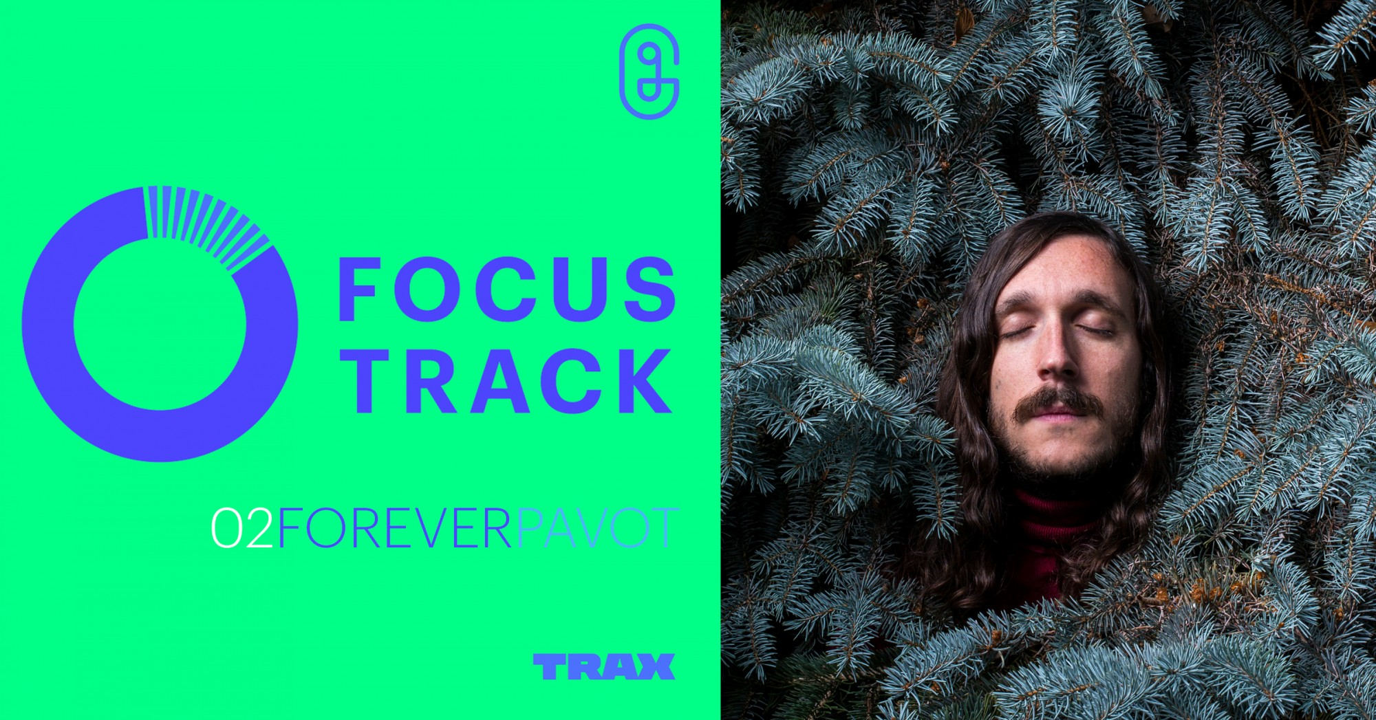 Focus Track : Forever Pavot pour toujours